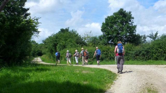 Die Pilgergruppe auf der letzten Etappe nach St. Sauveur-le-Vicomte. Foto: SMMP/Sr. Lucia Maria Schiefner